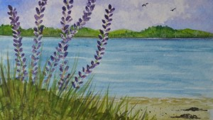 learn to paint lupines watercolor painting